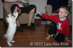 Nemo och Rasmus leker tillsammans