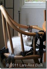 Nike vilar på Julia's stol